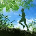 3e édition du trail du Lyon Vert !