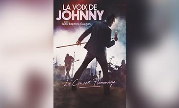 la voix de johnny au casino de royat